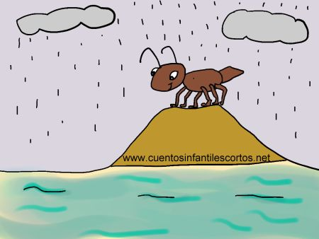 Short stories - Tip, the curious ant