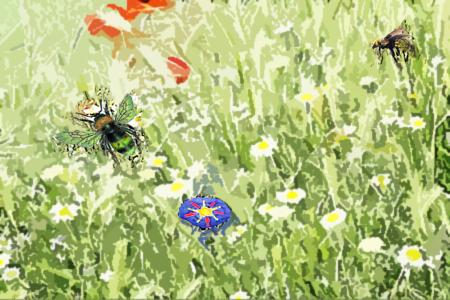 Story-bee