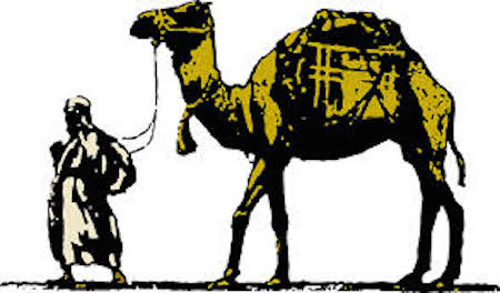camel-