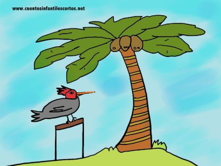 Online Short Stories | PETER AND THE COCONUT | Funny Stories for Kids